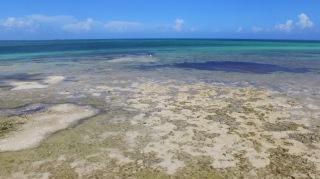 Florida Keys Ohio Key 02 071716